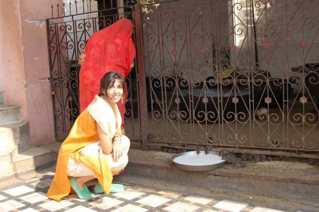 Karni Mata, Templo de las ratas, Rajastán, India