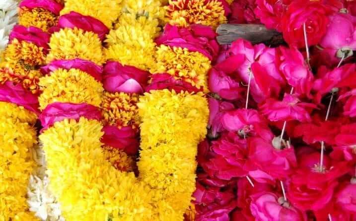 Que ver en Jaipur, la ciudad rosa