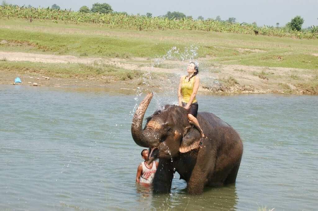 Bañar un elefante