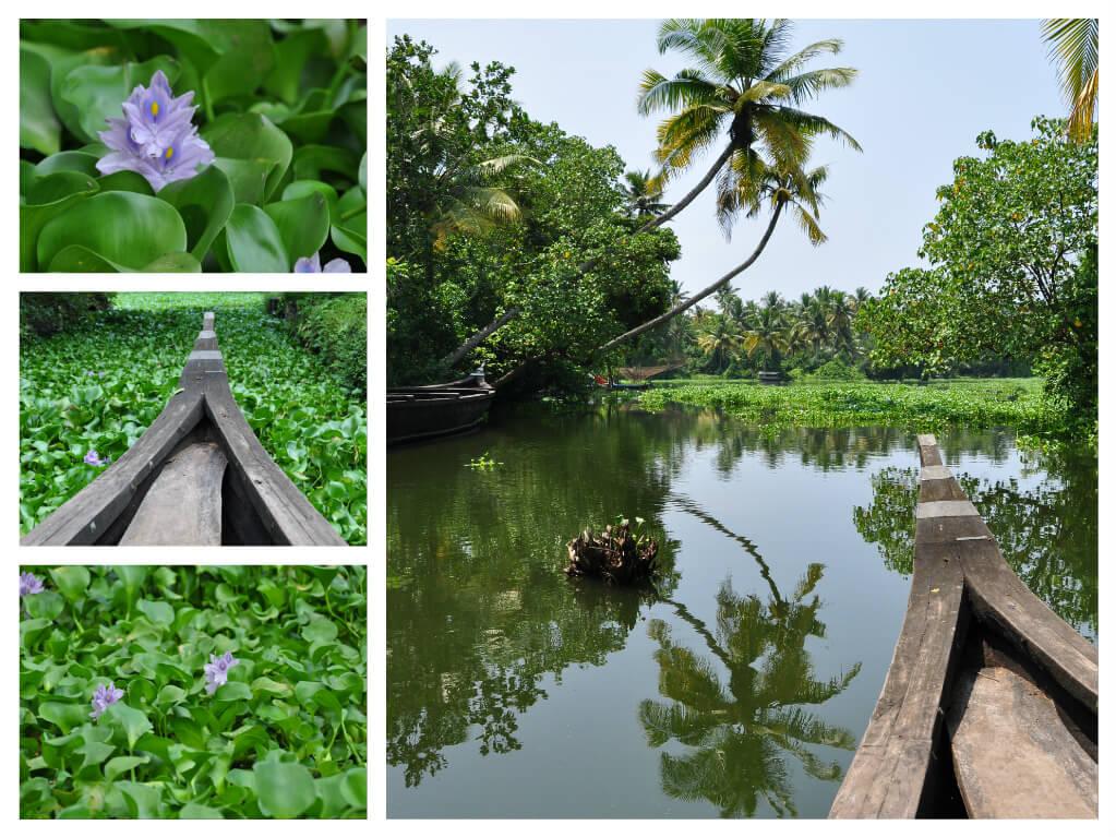 Los backwaters de Kerala