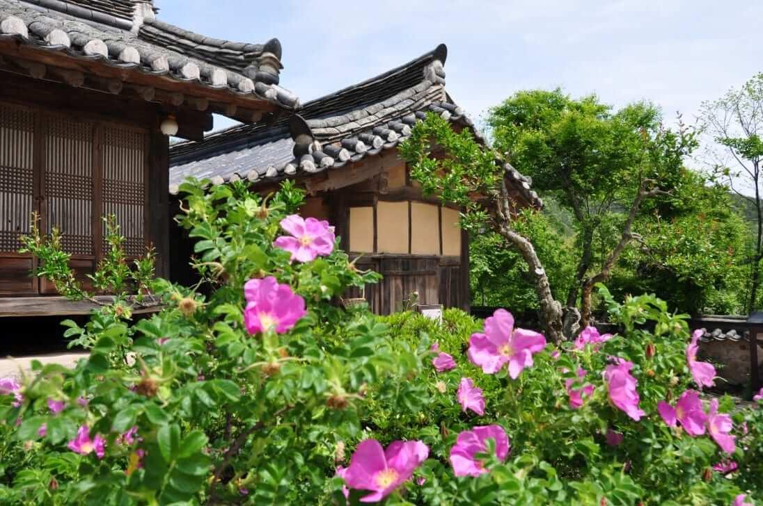 viajar en primaveraYangdong