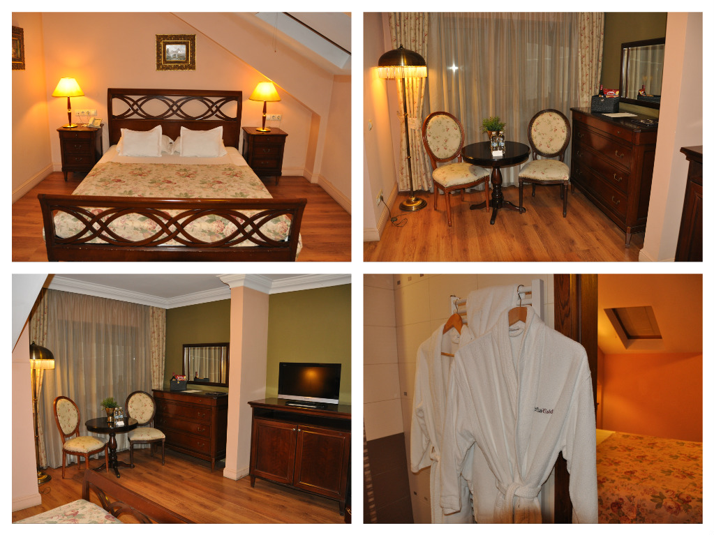 Hotel Sofía