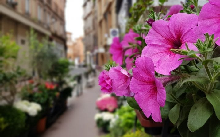 El tiempo en Toulouse