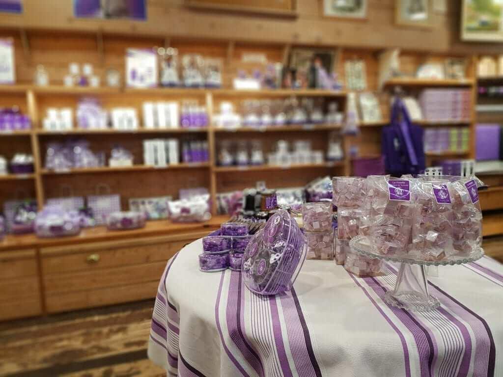 Toulouse la Maison de la Violette