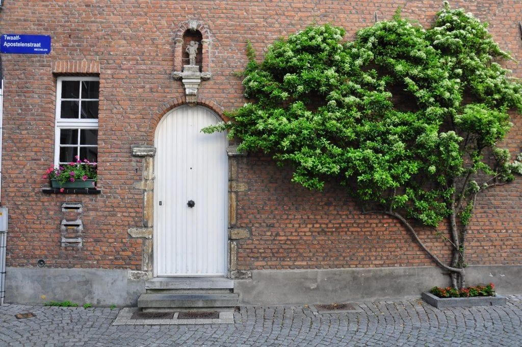 beaterios de Flandes, Beguinaje, Beaterio de Malinas