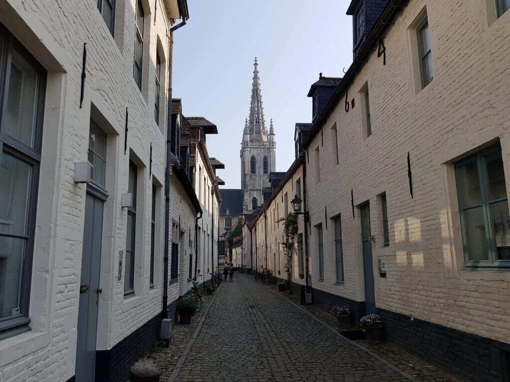Beaterios de Flandes, Lovaina