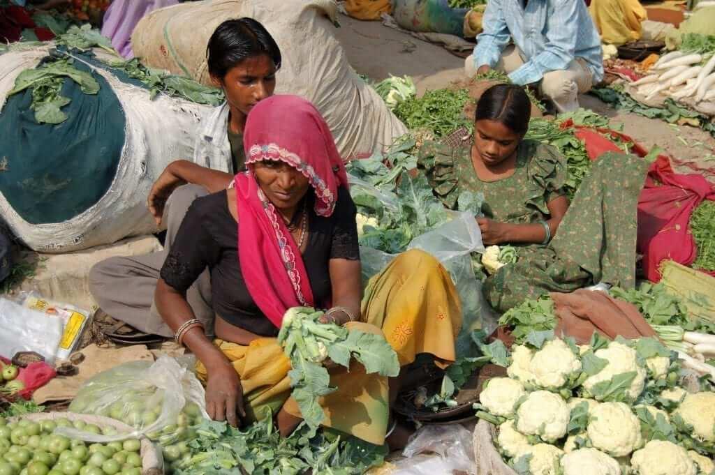 Qué ver en Rajastán, Mercados de Bundi
