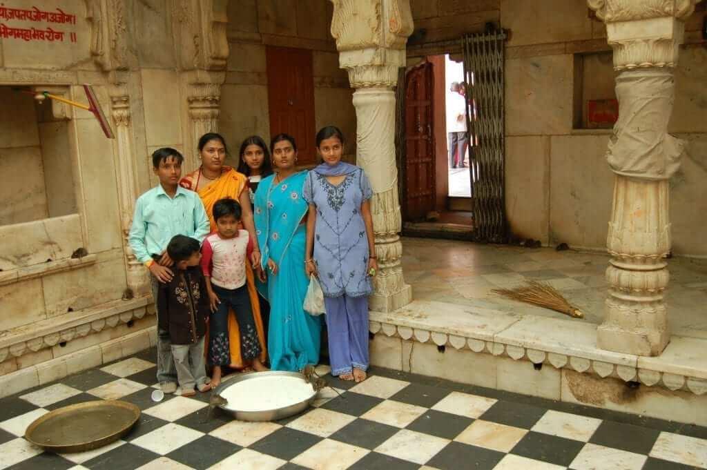 Que ver en Rajastán, templo de las ratas Karni Mata