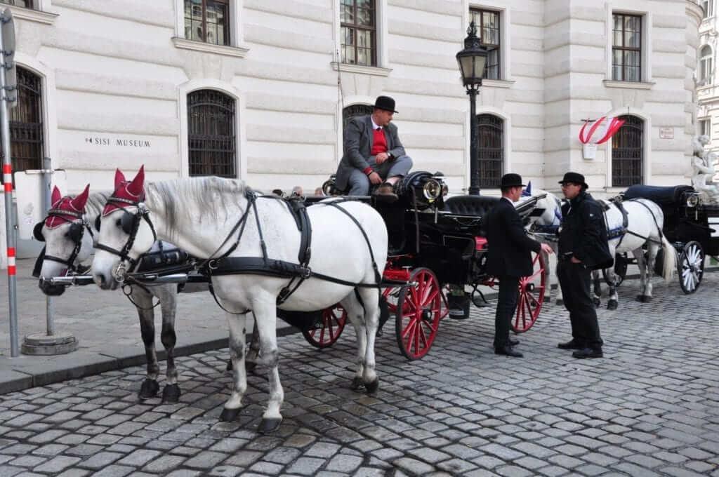 Coches de caballos Viena